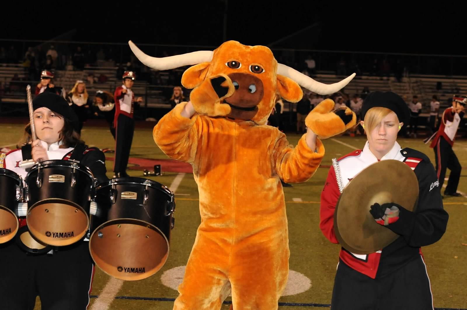 Longhorn-with-Band